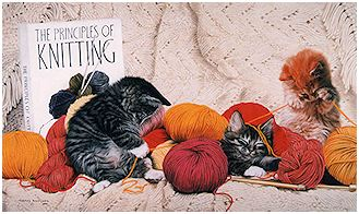 Knitting Guild - click to view larger